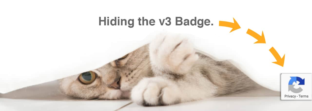 Hide the reCaptcha v3 badge the right way – BRIZZO